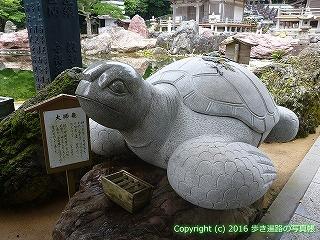38-934高知県土佐清水市