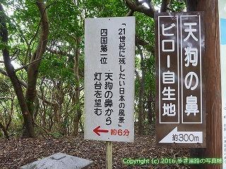 38-951高知県土佐清水市