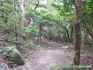 38-952高知県土佐清水市