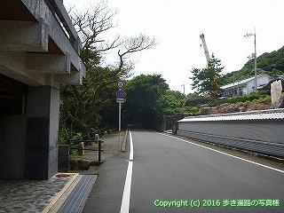 39-002高知県土佐清水市