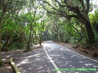 39-003高知県土佐清水市