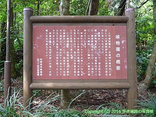 39-005高知県土佐清水市