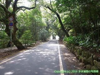 39-007高知県土佐清水市