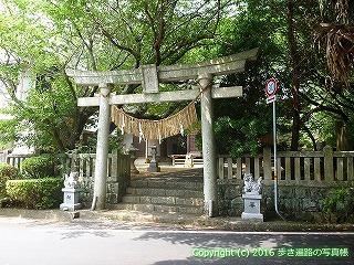 39-011高知県土佐清水市