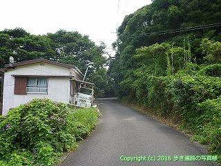 39-024高知県土佐清水市