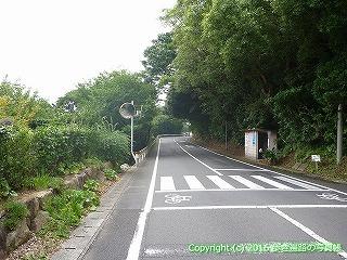 39-039高知県土佐清水市