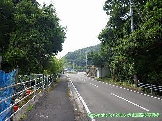 39-046高知県土佐清水市