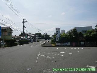 41-006愛媛県南宇和郡愛南町