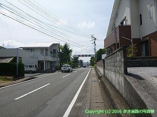 41-009愛媛県南宇和郡愛南町