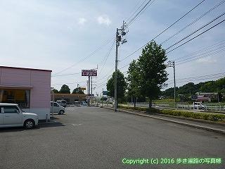41-014愛媛県南宇和郡愛南町
