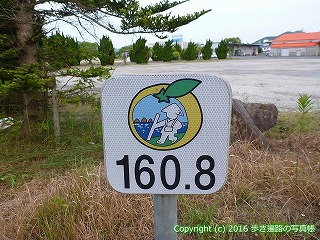 41-025愛媛県南宇和郡愛南町