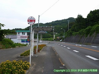 41-040愛媛県南宇和郡愛南町