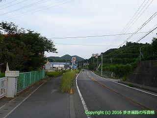 41-043愛媛県南宇和郡愛南町