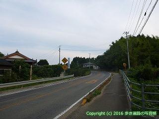 41-047愛媛県南宇和郡愛南町