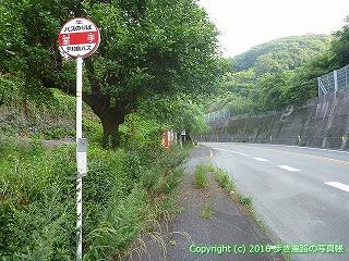 41-076愛媛県南宇和郡愛南町室手バス停