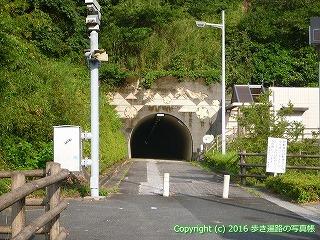 41-114愛媛県南宇和郡愛南町内海トンネル