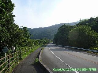 41-135愛媛県南宇和郡愛南町