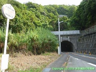 41-157愛媛県南宇和郡愛南町鳥越トンネル