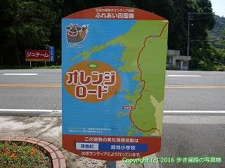 41-257愛媛県宇和島市
