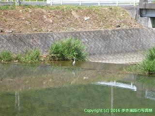 41-270愛媛県宇和島市