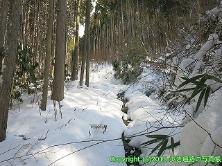 4501-017愛媛県上浮穴郡久万高原町