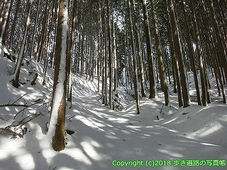 4501-033愛媛県上浮穴郡久万高原町