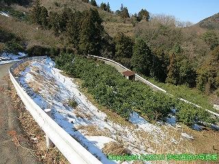 4601-008愛媛県松山市