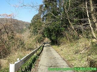 4601-013愛媛県松山市