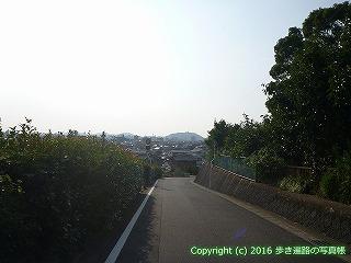 51-003愛媛県松山市