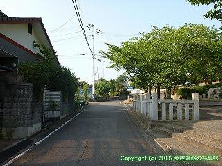 51-006愛媛県松山市