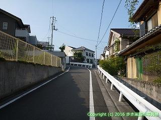 51-009愛媛県松山市