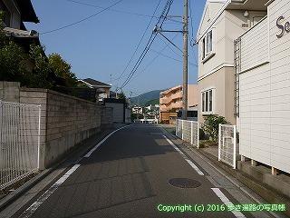 51-010愛媛県松山市
