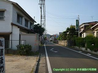 51-017愛媛県松山市