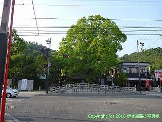 51-024愛媛県松山市