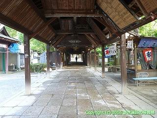 51-029愛媛県松山市