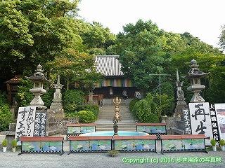 51-031愛媛県松山市