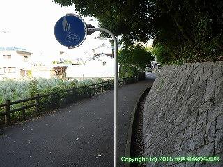 52-002愛媛県松山市