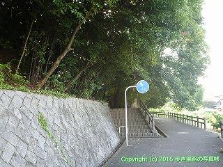 52-003愛媛県松山市