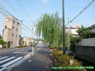 52-005愛媛県松山市