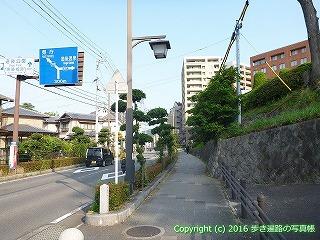 52-009愛媛県松山市