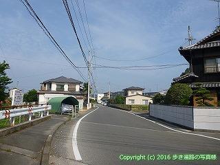 52-050愛媛県松山市