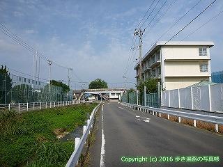 52-060愛媛県松山市