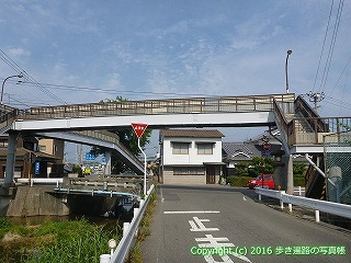 52-061愛媛県松山市