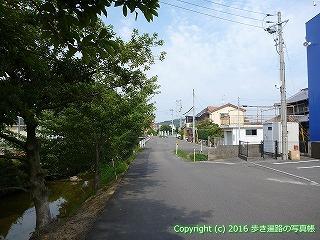 52-066愛媛県松山市