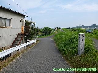 52-077愛媛県松山市甲コースを歩いています