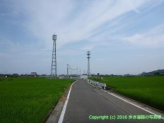 52-081愛媛県松山市