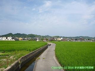 52-084愛媛県松山市