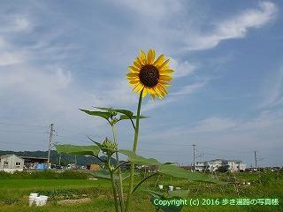 52-098愛媛県松山市
