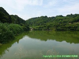 52-111愛媛県松山市