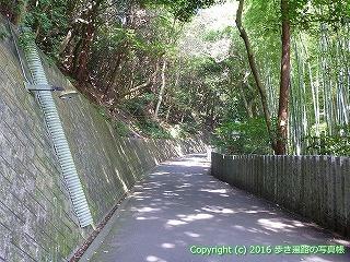 52-130愛媛県松山市
